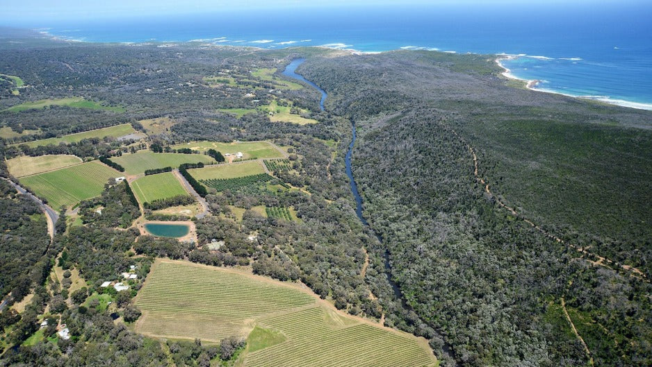 Why Margaret River's chardonnays are centuries ahead of their time