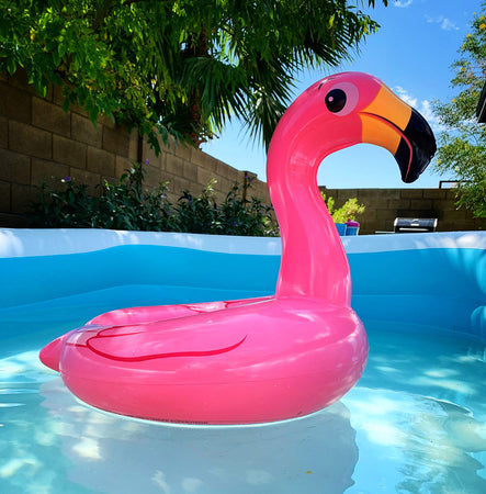 above ground swimming pool with inflatable flamingo