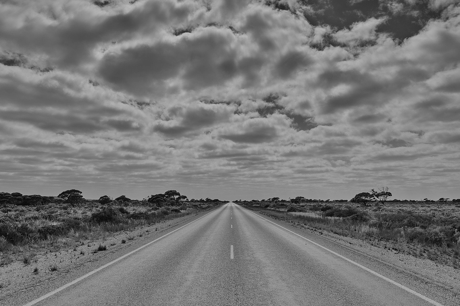 Endless Road. Nullarbor Plain. PSP-0142