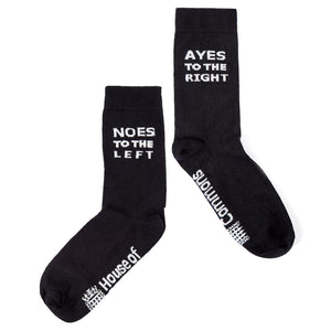 House of Commons Ayes/Noes Socks