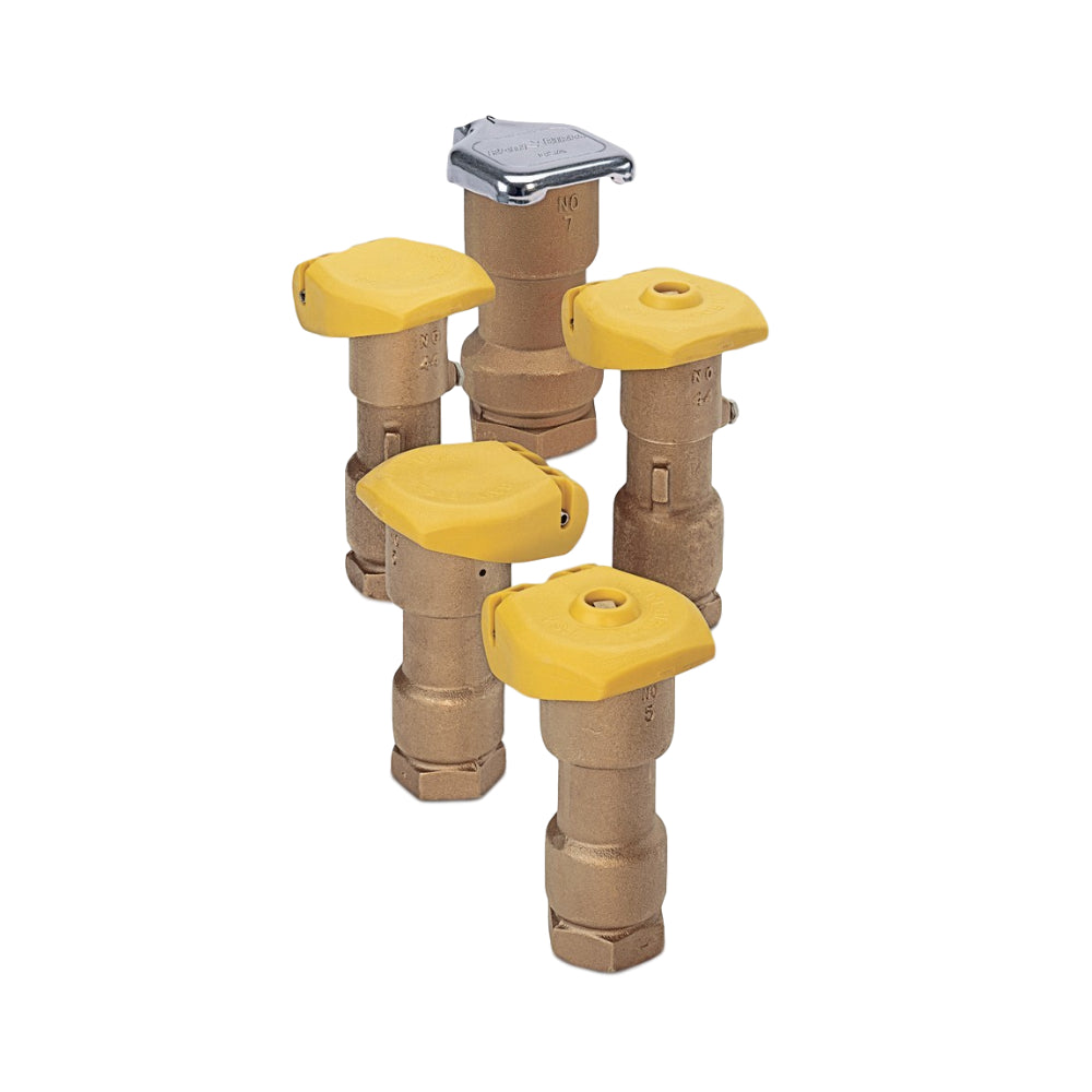 Rain Bird Quick Coupling Valves