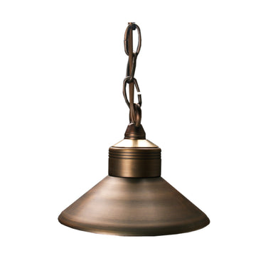 Unique - OBSE-NL - Observer Hanging Light Brass Housing Weathered Brass No Lamp