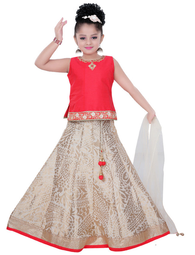 White and red lehenga with embroidery