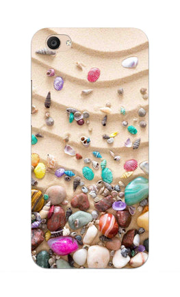 Sea Shell Collection Beach Lovers Vivo V5 Plus Mobile Cover Case