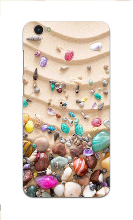 Sea Shell Collection Beach Lovers Vivo Y55L Mobile Cover Case