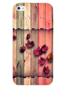Color Wood iPhone 5S Mobile Cover Case