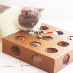 Hide & Seek Box Scratching Toy