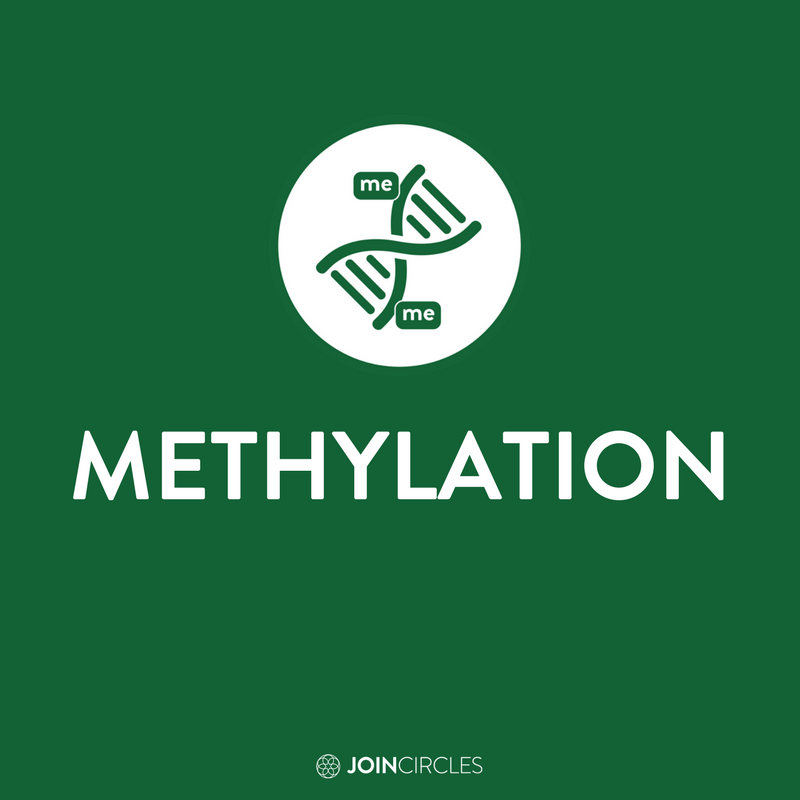 How can you start methylating optimally?