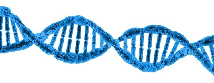 Could a DNA TEST save your life? By Equilibro - Michelle Doyle