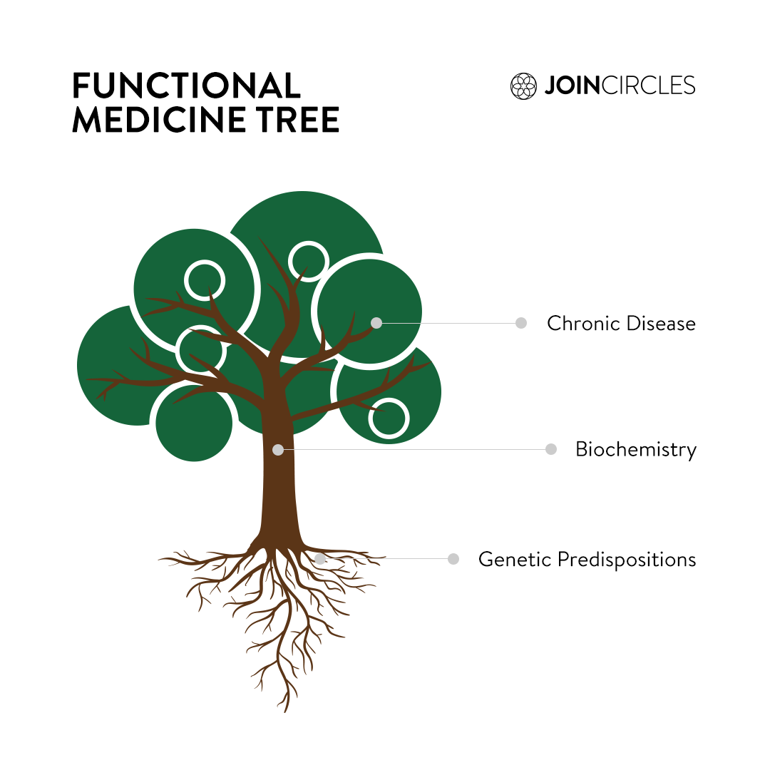 The Functional Medicine Tree