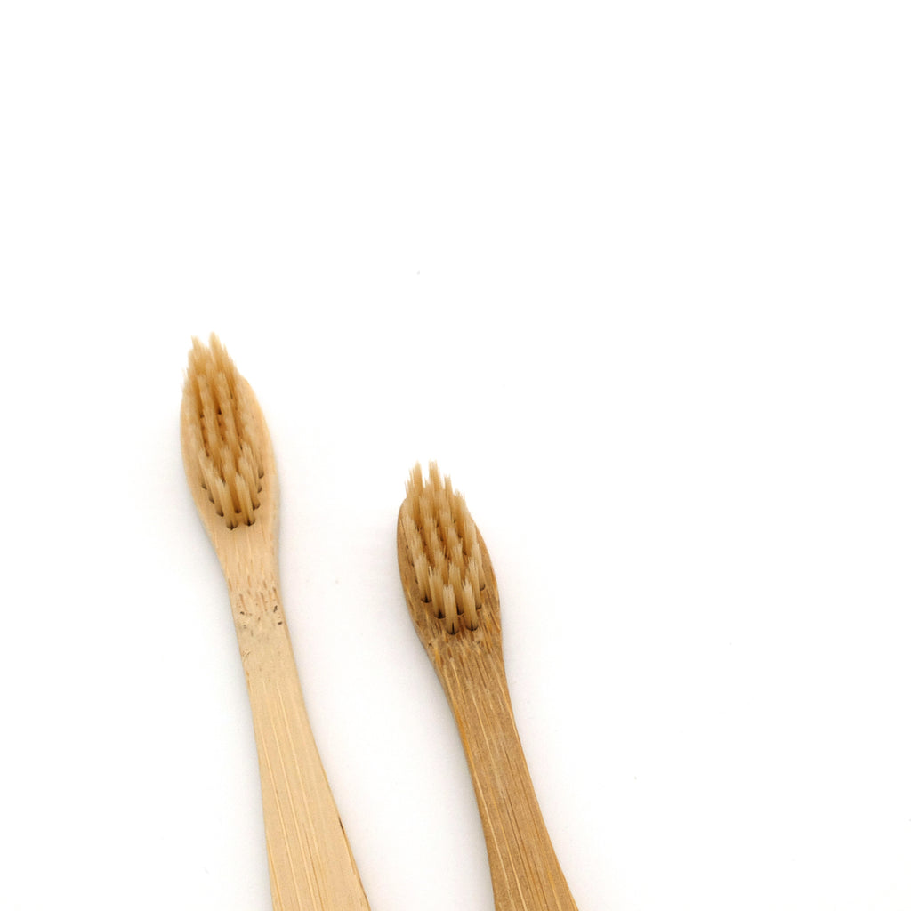 Family Pack Bamboo Toothbrush