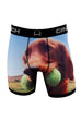 Cinch Men's Boxer Briefs