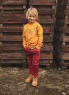 Ammehoela - Sweater Rocky Yellow