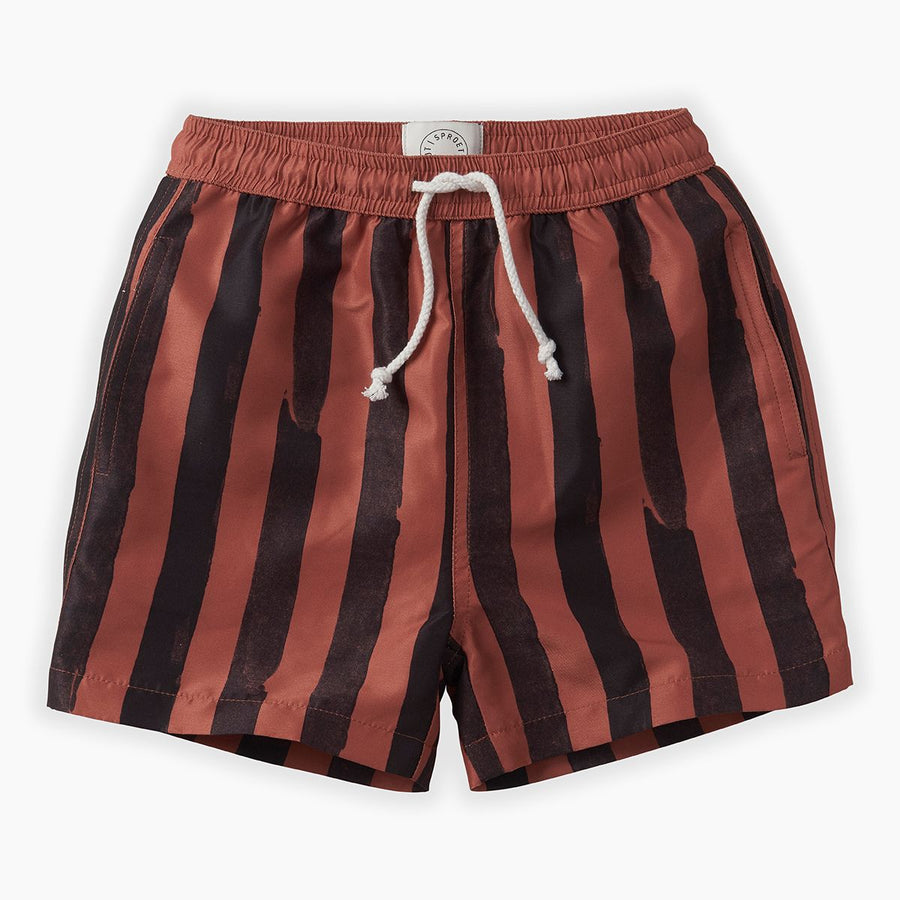 Zwemshort Painted Stripe