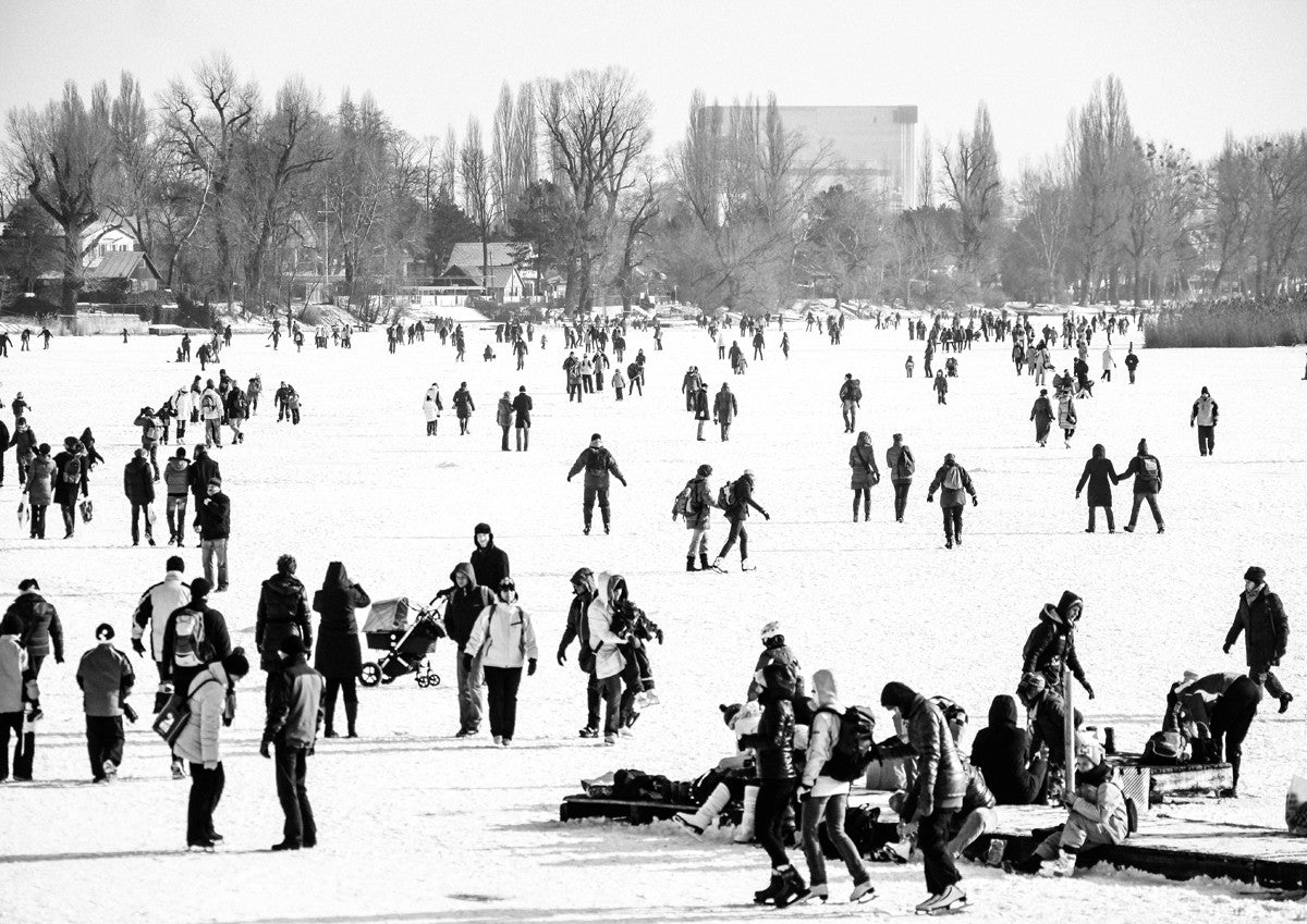 Ice Skating Crowd