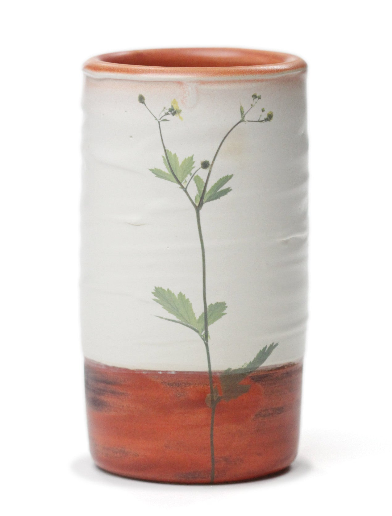 Butter Cup Cylindrical Vase