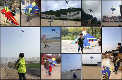 KITE, FLY FIGHTER, AIRCRAFT