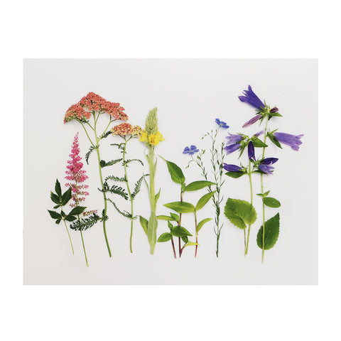 Blank Folding Greeting Card in Multicolor Wildflowers and Greenery