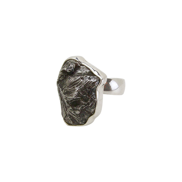 TW Designs Adjustable Gray Meteorite Statement Ring in Sterling Silver