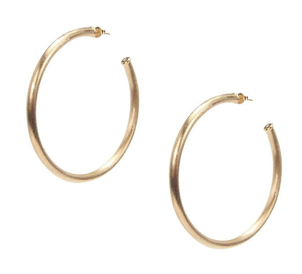 Sheila Fajl 2.25 Inch Everybody's Favorite Hoop Earrings in Champagne