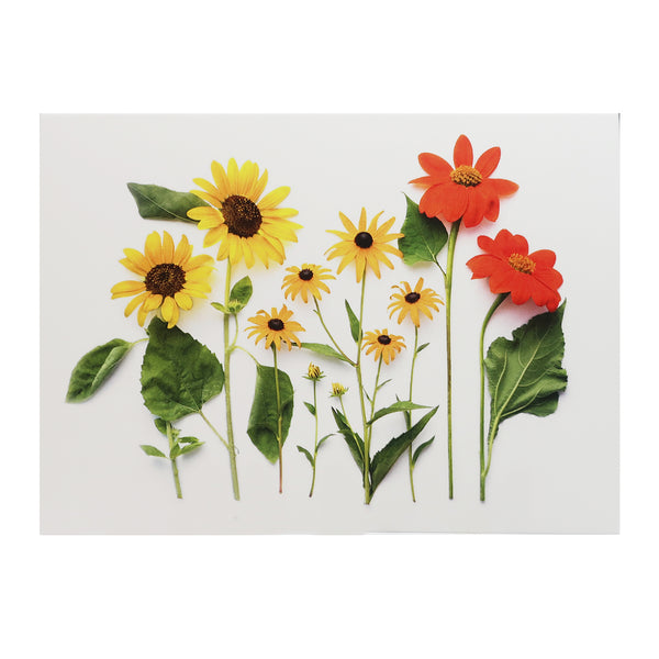 Blank Folding Greeting Card in Yellow, Orange and Red Summer Sunflowers