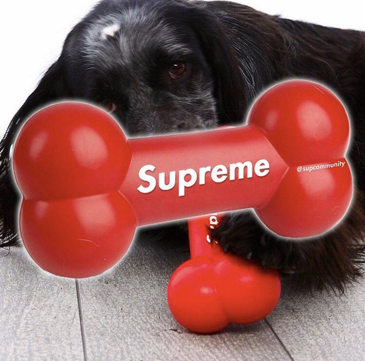 Potential Supreme Dog Chew Toy FW17 (Fall/Winter 2017) Leak