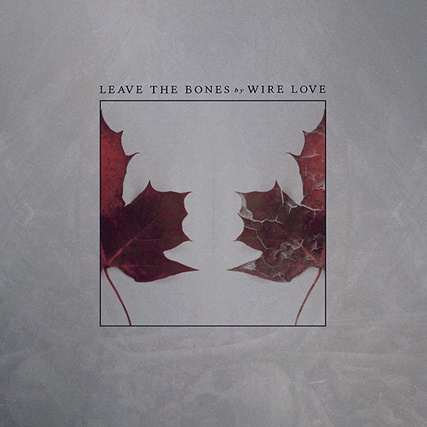 "WIRE LOVE ""Leave The Bones"""