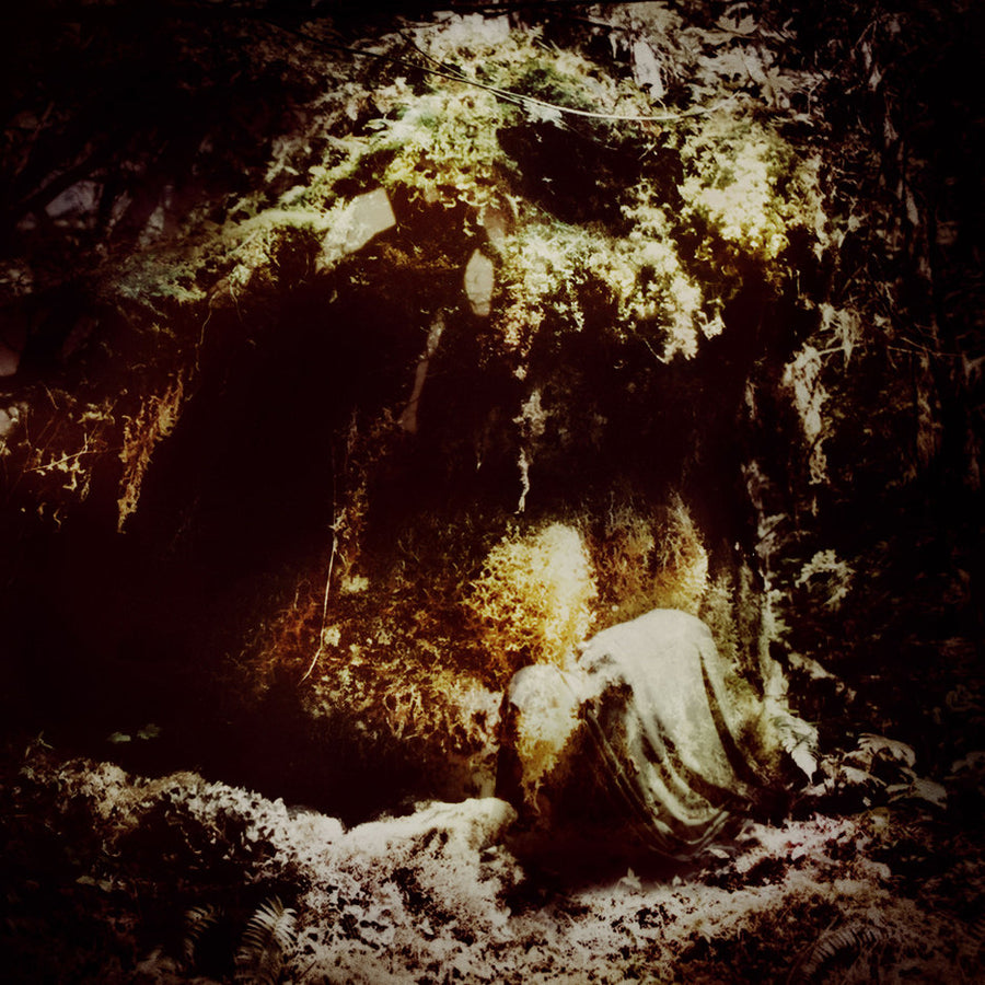 "WOLVES IN THE THRONE ROOM ""Celestial Lineage"""