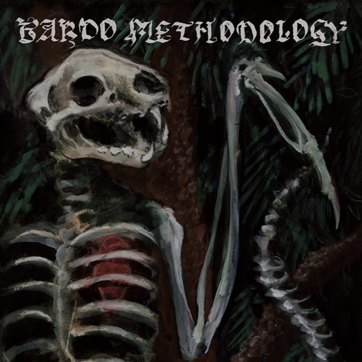 BARDO METHODOLOGY #4