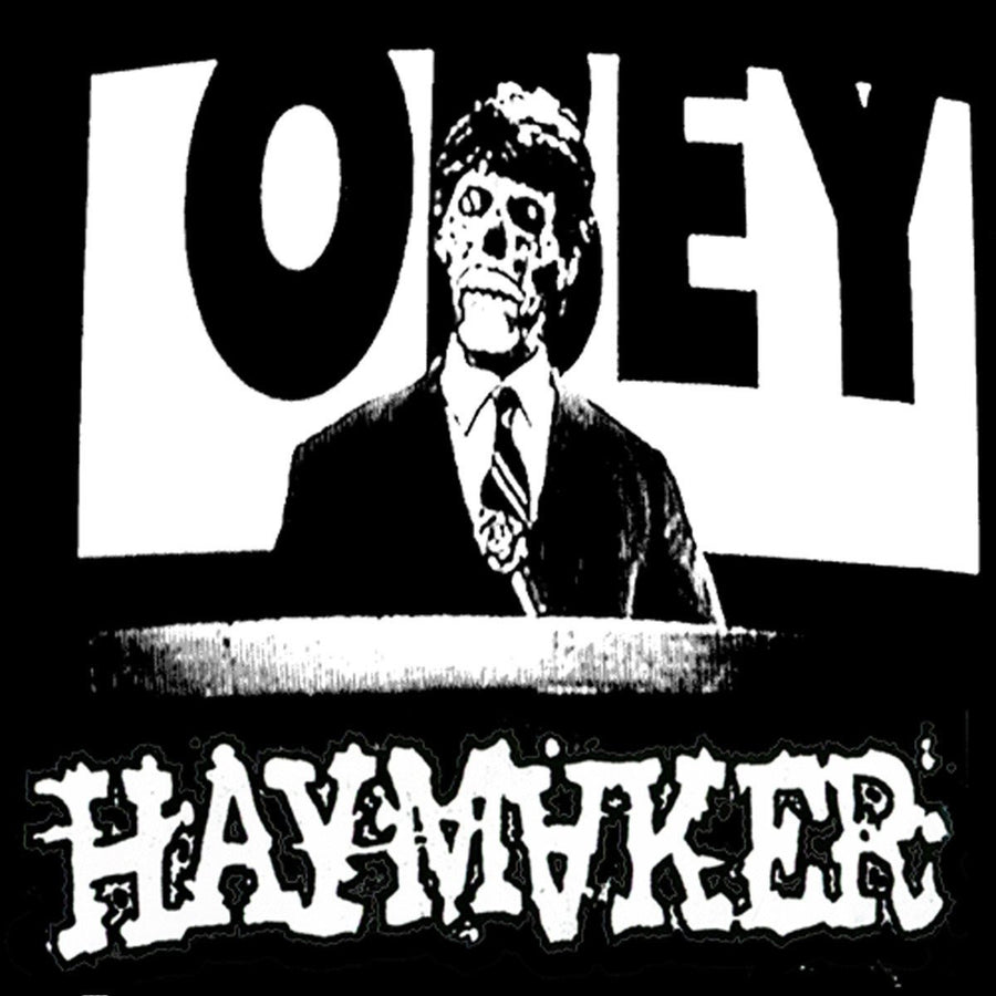 "HAYMAKER ""Let Them Rot""-A389 Recordings-Deathwish Inc Europe"