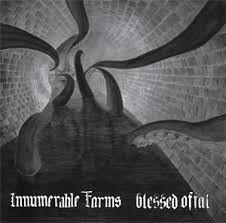 "INNUMERABLE FORMS / BLESSED OFFAL ""Split"""