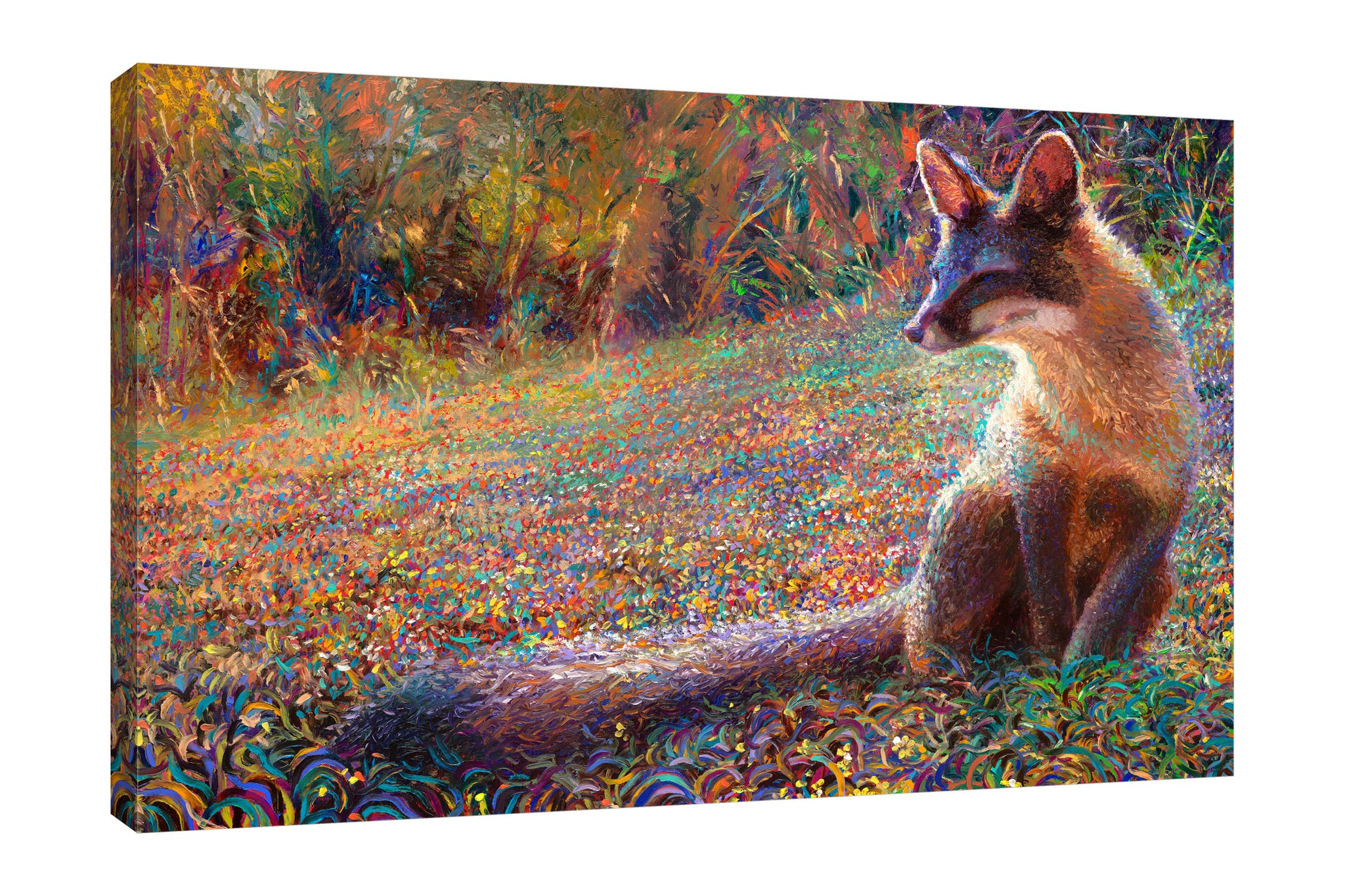 Fox Tail Thicket | Canvas Print
