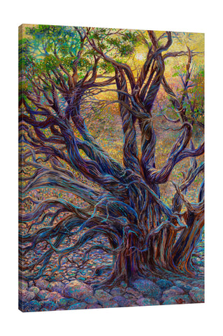 Juniper Loom | Canvas Print