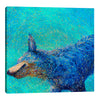 Shaking Blue Heeler | Canvas Print