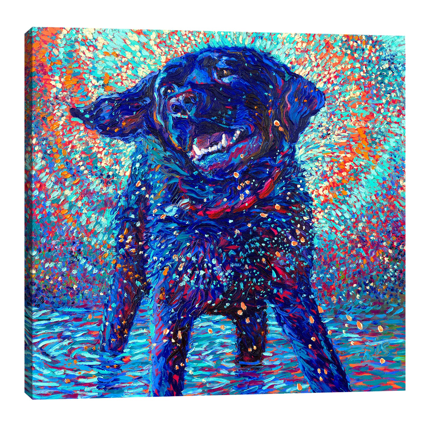 Canines & Color | Canvas Print