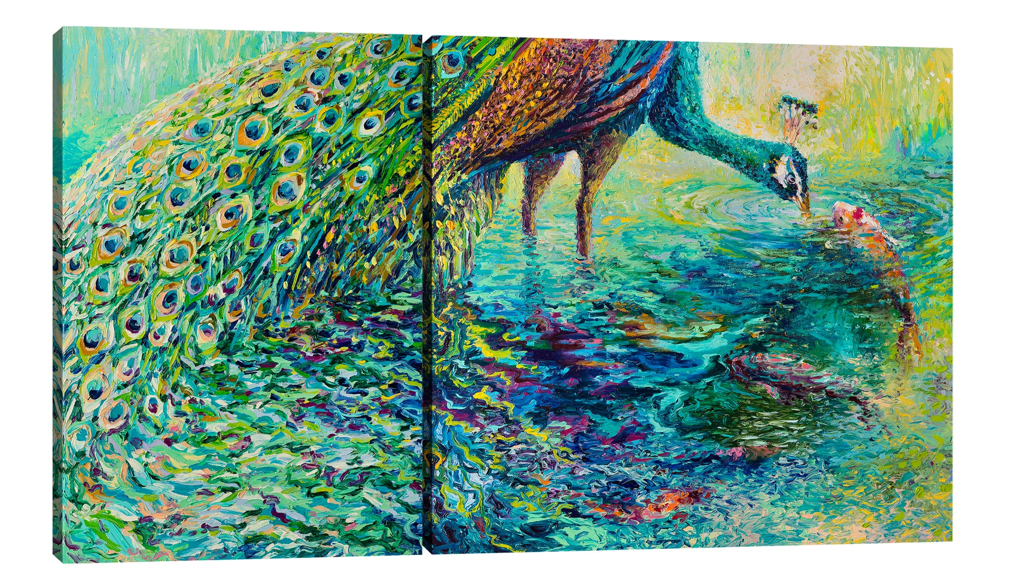 Peacock Parlay (Diptych) | Canvas Print