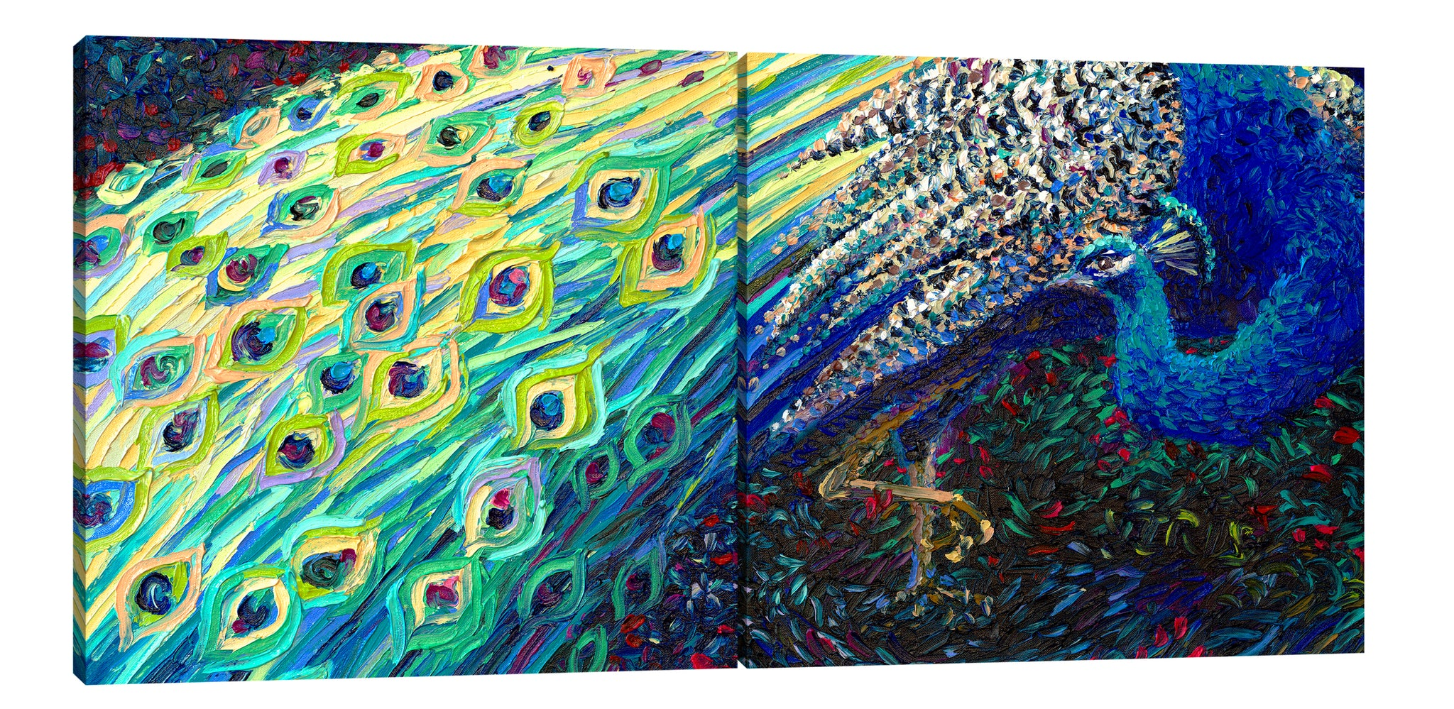 Black Peacock (Diptych) | Canvas Print