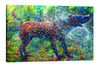Canis Major | Canvas Print