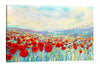 Poppies of Oz | Canvas Print