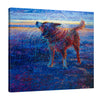 Coastal Canine | Canvas Print