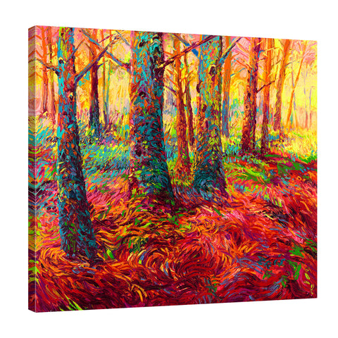 Redwood Fall | Canvas Print