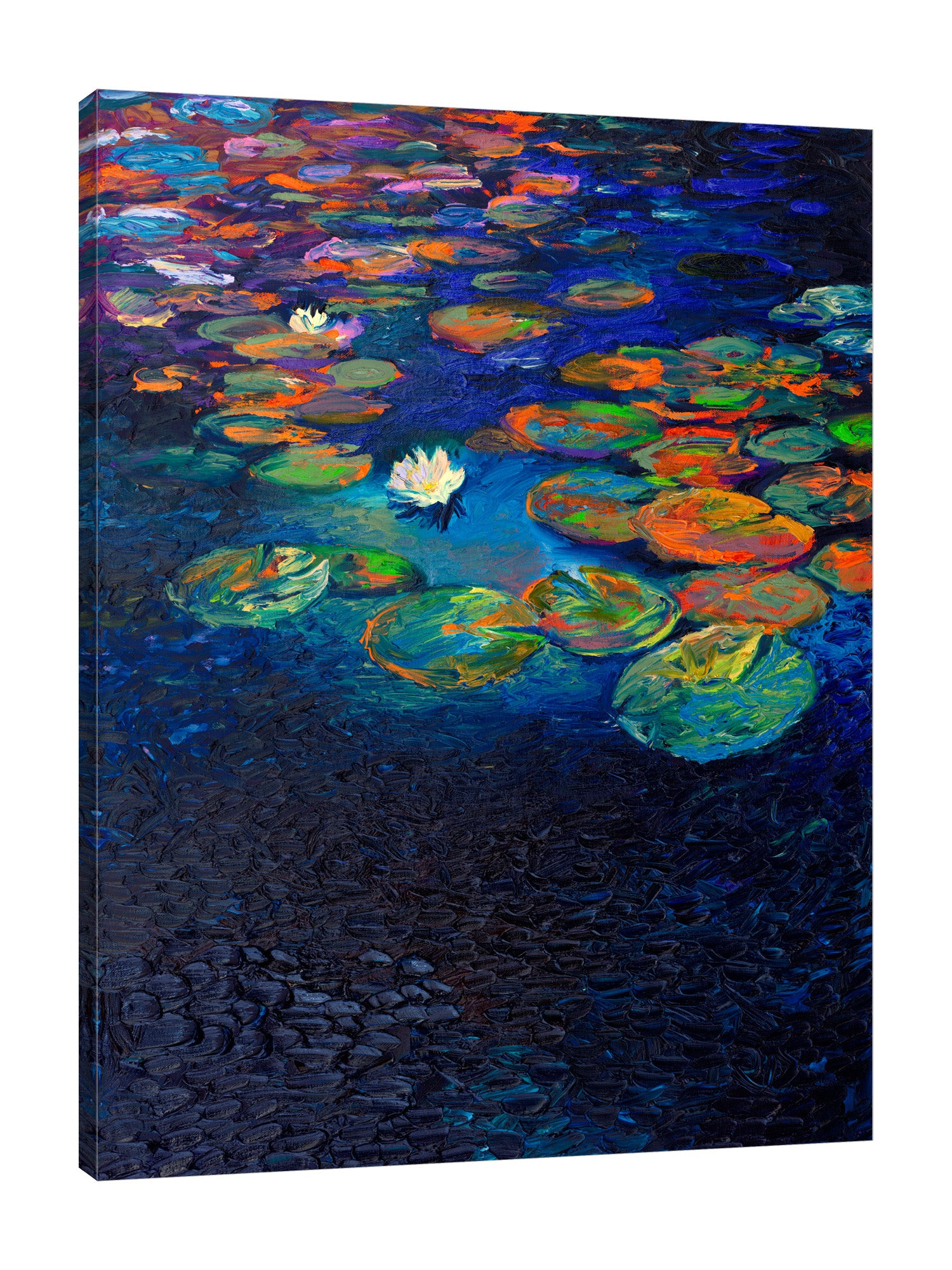 Nymphaea Lotus | Canvas Print