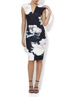 Paige Printed Scuba Dress