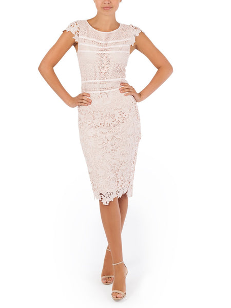 The Olivia Lace Top A Feminine & Romantic Piece Available in Pink