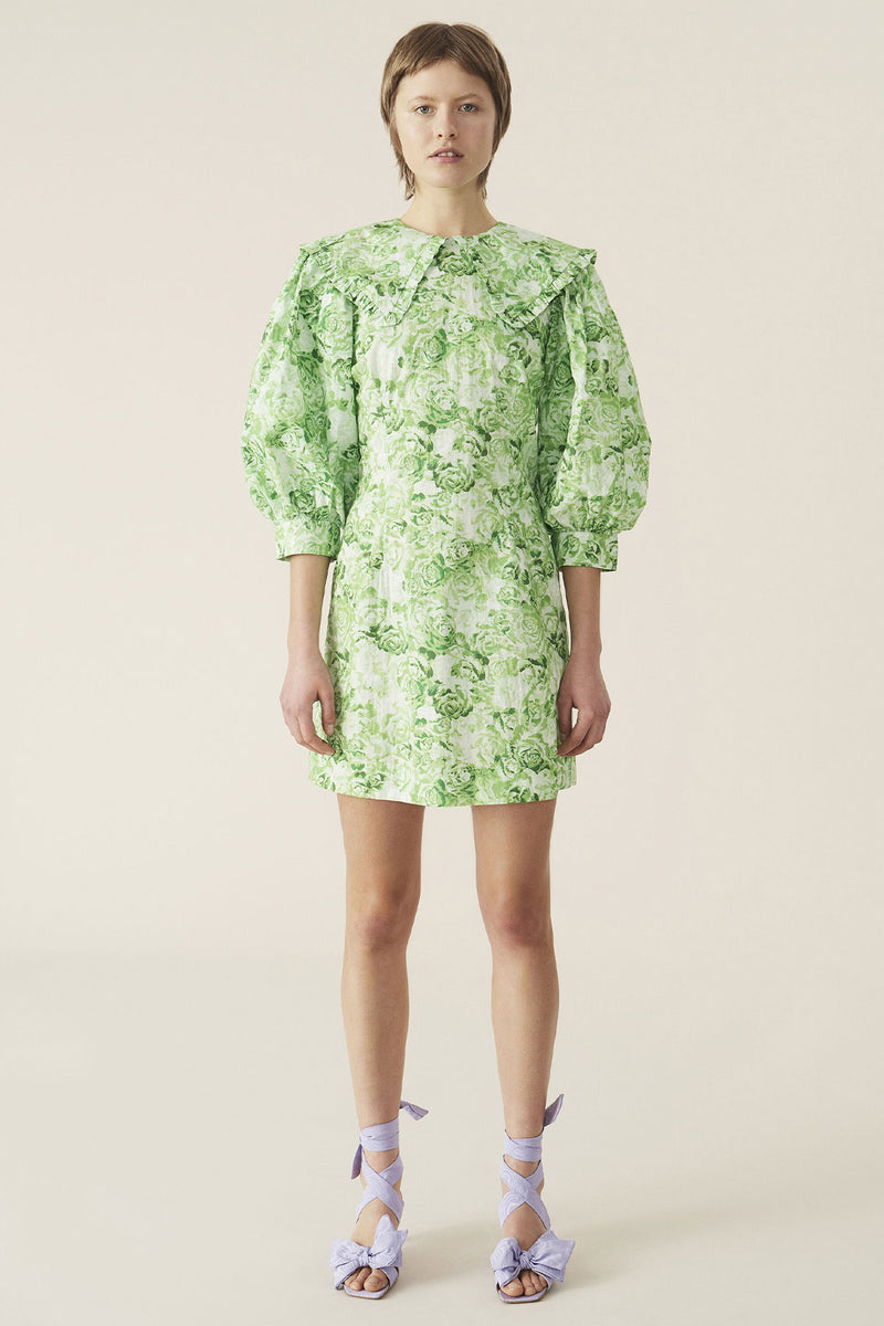 Printed Cotton Poplin Mini Dress Island Green
