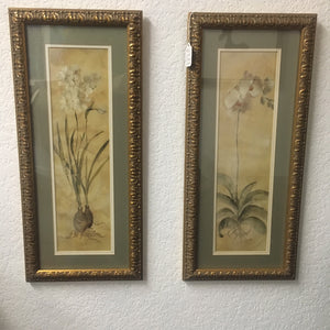 2 Framed Floral Prints