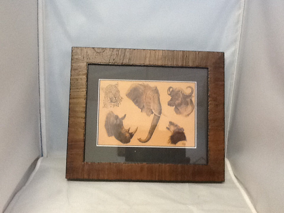 "Framed ""Big 5"" from African Safari"