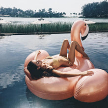 Rose Flamingo Float