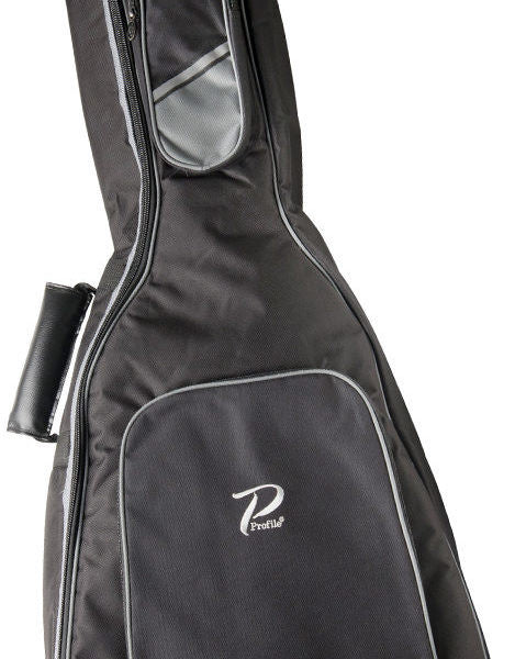 Guitar Cases & Gig Bags