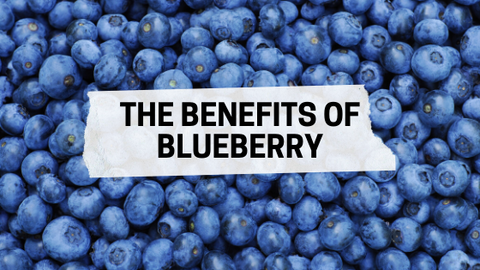 The benefits of blueberry